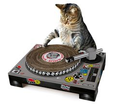 Anderson's Gift to Stacy London | DJ Cat Scratch Turntable, PerpetualKid.com
