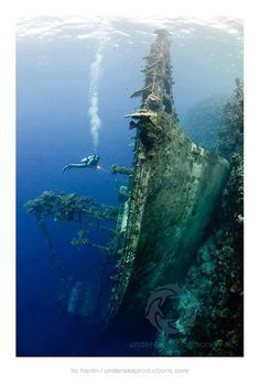 """""""Upright Shipwreck"""" at Nono Lagoon, Solomon Islands. This tuna boat ran into the reef then slid down the drop-off until it came to rest upright on a deep ledge.เรือจมแนวตั้งBy: Liz Harlin"""