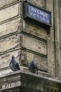 L'avenue Victoria (Paris 75001/75004)