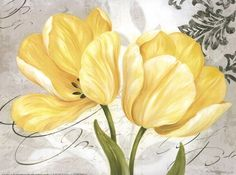 Colori Yellow II Fine-Art Print by Pamela Gladding at UrbanLoftArt.com