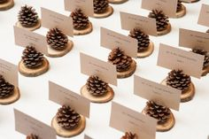 Pinecone Place Card Holder Wedding Escort Cards by LoveItRustic