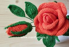 rose uncinetto con gambo aperte: schemi e tutorial - manifantasia Love Crochet, Crochet Flowers, Knit Crochet, Flower Crafts, Flower Art, Cactus, Photo Pattern, Rose Tutorial, Lana