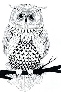 Owl line art. Very cool drawing! http://www.creativeboysclub.com/tags/illustration
