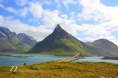 The ultimate road trip in Lofoten - Itinerary | Norway - Minikin Escapades