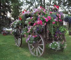 Old wagon turned Mega Planter!