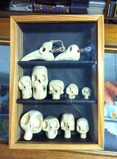 caveiras - museum box