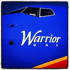 Southwest Airlines accepts delivery of its first Boeing appropriately named Warrior One! our-fleet Delta Flight Attendant, Civil Aviation, Aviation Art, Liberian Girl, Best Airlines, Warrior Spirit, Airplane Art, Southwest Airlines, Air Travel