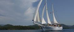 Zeilen langs de Turkse kust? Op je eigen zeiljacht? Ook dat is te regelen tijdens het Cruise & Zeil Event in Eindhoven. Eindhoven, Sailing Ships, Cruise, Events, Cruises, Sailboat, Tall Ships
