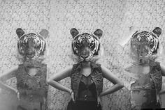 animal head   Tumblr