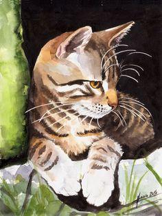 lmsgfbn:  Tabby Cat Kerstin Haase