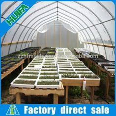 Single span greenhouse for aquaponic system