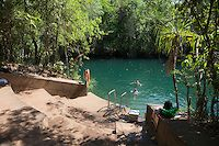 An hours drive south of the Northern Territory capital, Litchfield National Park is a quick entry into the Australian outback lifestyle, with its freshwater plunge pools, giant termite mounds, and world famous mango cheesecake. Litchfield National Park, Plunge Pool, I Want To Travel, Travel Photographer, Australia Travel, Outdoor Activities, Fresh Water, Places Ive Been, Berry