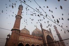 The Jama Masjid in Delhi #streetphotography #streetphotographer #India #travel #travelphotographer #travelphotos