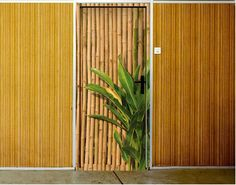 Deurbehang - zelfklevend Bamboo Wall