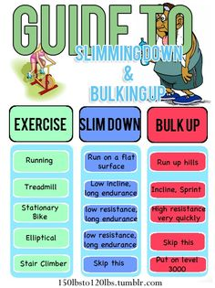 Guide to slim down or bulk up.