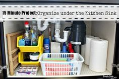 Do You Know What's Lurking Under Your Kitchen Sink Right Now?