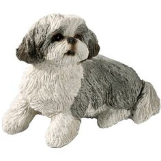 Sandicast Small Size Silver and White Shih Tzu Sculpture, Sitting by Sandicast, http://www.amazon.com/dp/B001L9HA34/ref=cm_sw_r_pi_dp_lDvorb0GSVEWE