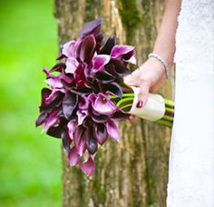 I wish my bouquet had turned out like this.  :(  Flowers were the only thing I regretted about my wedding.  Everything else was perfect!