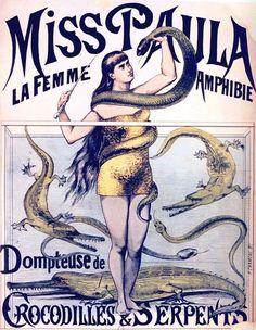 vintage circus freak show poster, crocodile/snake lady!
