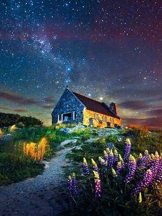 The house under the star sky