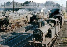 Willesden Shed Yard still full of steam, Steam Trains Uk, Old Steam Train, Diesel Locomotive, Steam Locomotive, Steam Railway, Abandoned Train, Train Art, British Rail, Old Trains