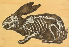 David Huynh_ Simple Hare Oil on Wood,  8 5/8 X 11 rabbit, bunny, skeleton, anatomy, painting, oil painting, side view, skull