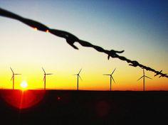 IKEA Buys 165MW Texas Wind Farm-Largest Wind Deal to Date - http://1sun4all.com/renewable-energy/ikea-buys-texas-wind-farm-largest/