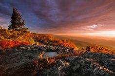 Mountains In WV | ... Mountains from Bear Rocks, Dolly Sods Wilderness, West Virginia