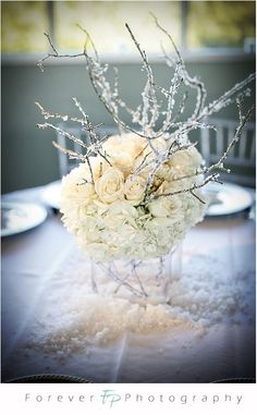 http://1.bp.blogspot.com/_I8xjBfwl-Jo/SYnYp7i696I/AAAAAAAAArk/MRhgQUxa2Bo/s1600/winter+wonderland+centerpiece+with+hydrangea+roses+and+branches.jpg