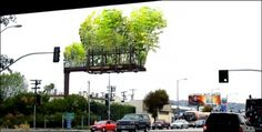 October 30, 2012 | New Eco | by  Low Lai Chow |    Urban Air, a public project initiated by artist Stephen Glassman, started out as a studio artwork, but might just eventually make it out into the freeways of Los Angeles, followed by other cities around the world, if it manages to secure $100,000 of funding on Kickstarter by Dec 11. Basically the idea is to transform billboard space into bamboo gardens. Floating greenery instead of ads: it's a beautiful idea.