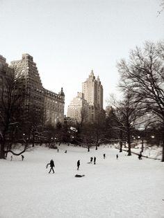 TRACY'S NEW YORK LIFE: Winter Wonderland in The Big Apple