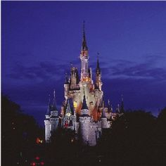 The Most Magical Place on Earth - Will always be my most favorite place to vacation, even when I'm 80 :)