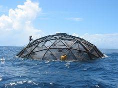Aquapod Subsea Fish Farms – Bizarre Maritime Technology