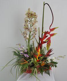 Arreglo Floral Exotico  Cymbidium Boina. http://www.magentaflores.com/productos/arreglos-florales-exoticos-bogota.html