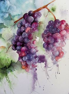 40 Excellent But Simple Pastel Watercolor Paintings To Try This Year - Free Jupiter From nature to beaches and too complicated artwork, Simple Pastel Watercolor Paintings have no boundaries.You can choose whatever niche you like Grape Painting, Fruit Painting, Oil Painting Flowers, Painting & Drawing, Flower Painting Canvas, Painting Lessons, Watercolor Fruit, Pastel Watercolor, Watercolor Landscape