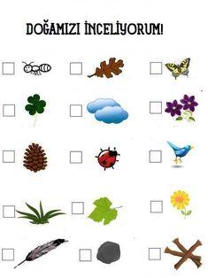Forest School, Halloween Coloring, Reggio Emilia, Montessori, Activities For Kids, Kindergarten, Science, Children, Fle