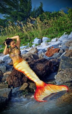 A mermaid in a beautiful white, orange and red striped tail relaxes on a rock by a river. but picture it on red sand stone. Siren Mermaid, Mermaid Cove, Mermaid Kisses, Mermaid Lagoon, Real Life Mermaids, Mermaids And Mermen, Mermaid Pictures, Mermaid Pics, Mermaid Artwork