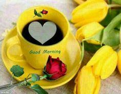 Good Morning Friends :)  Visit Our Website ●► http://www.hstdeals.com/specials