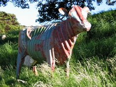 Corrugated Iron Cow by Jeff Thomson.  New Zealand artist who sculpts with recycled corrugated roofing iron. The colour is the original paint.