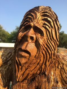 Face detail of life sized sasquatch carving by Butch Elrod. Simple Wood Carving, Wood Carving Faces, Wood Carving Art, Wood Carvings, Ship Figurehead, Cement Art, Bigfoot Sasquatch, Tree Faces, Walking Sticks And Canes