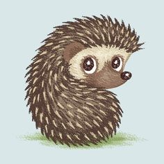 Hedgehog Art Print by Toru Sanogawa Hedgehog Art, Hedgehog Drawing, Cute Hedgehog, Hedgehog Tattoo, Hedgehog Illustration, Cute Illustration, Woodland Creatures, Cute Creatures, Animal Drawings