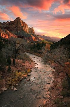 Travel Memory The Watchman Mountain Hiking Trail, Zion National Park, Utah, USA. I want to hike there! Zion National Park, National Parks, Zion Park, National Forest, Places To Travel, Places To See, Landscape Photography, Nature Photography, Park Photography
