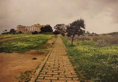 Pietro Porcinai, Parco Archologico di Selinunte, Agrigento, Italia, 1966-71.