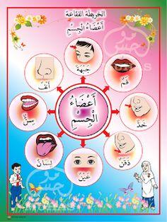 I THINK BAHASA ARAB: PETA I THINK BAHASA ARAB Ramadan Activities, Montessori Activities, Alphabet Activities, Preschool Learning, Alphabet Letter Crafts, Arabic Alphabet For Kids, Body Parts Preschool, Learn Arabic Online, Arabic Phrases