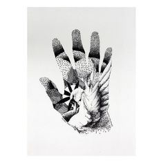 NOVICA Swan and Flower on Hand Black and White Painting (€355) ❤ liked on Polyvore featuring home, home decor, wall art, decor, black and white, modern and freestyle, paintings, word wall art, paper wall art y blossom painting