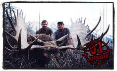 BC Moose Hunting Guides and Outfitters