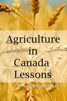 Agriculture in Canada Lessons
