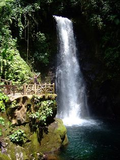 Lapaz Waterfalls, Costa Rica #Travel #Trips #Tour http://maupintour.com/countries/costa-rica