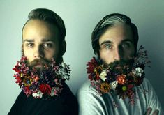 The Gay Beards: Des portraits au poil