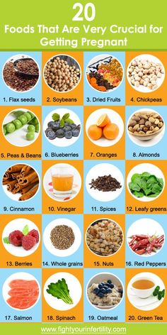 20 Foods That Are Very Crucial for Getting Pregnant - Nutrition for fertility and hormone balance - Schwanger Fertility Food For Women, Foods To Boost Fertility, Fertility Diet, Fertility Doctor, Fertility Boosters, Increasing Fertility, Fertility Smoothie, Ways To Increase Fertility, Fertility Quotes